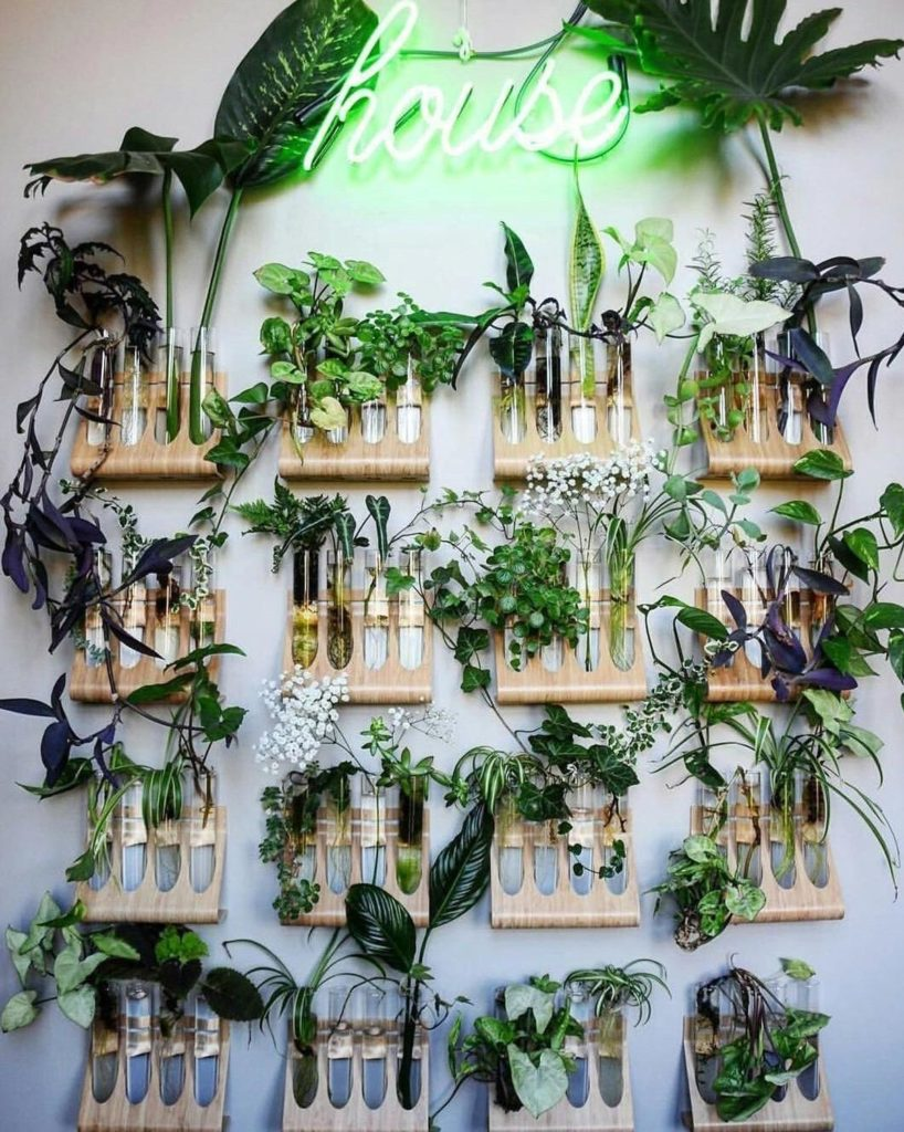 idee creative con il verde