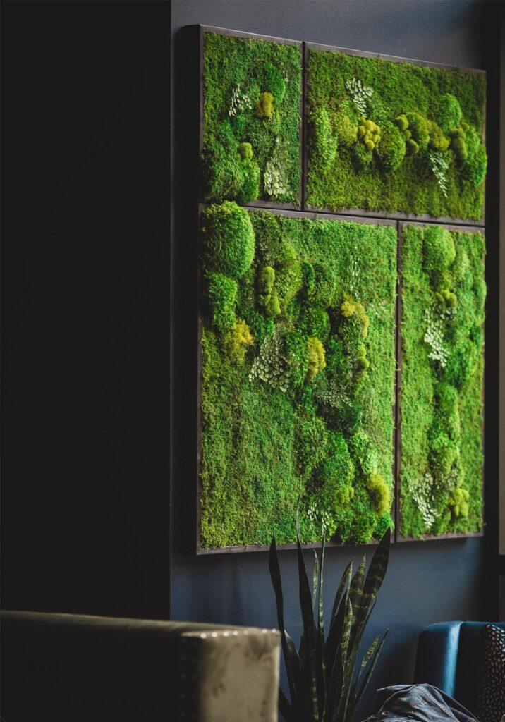 idee creative per arredare casa con il verde delle piante